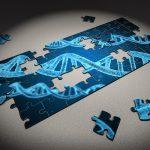 遺伝子組み換えのメリット・デメリットをわかりやすく解説してみた